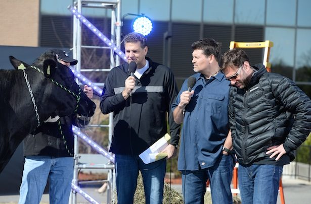 "Photo of Mike & Mike's ""Werner Ladder Bracket Challenge"" comes to an odiferous conclusion"
